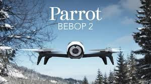 fantastic Parrot Bebop 2