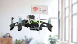 Top 5 Parrot Drones – Buying Guide of Parrot Drones