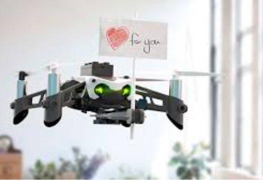Best Parrot Drone